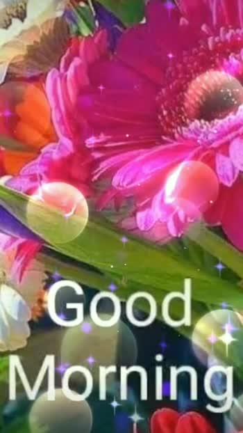 ##goodmorning #goodmorning