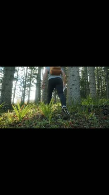 Hiking in woods #wood #woods #hiking #hikingviews #hikingtrail #hikingtrails #amazing #view #location #jungle