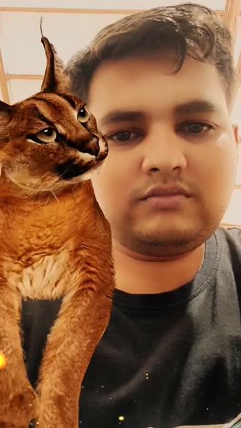 pussy#monster#wild kattie#
