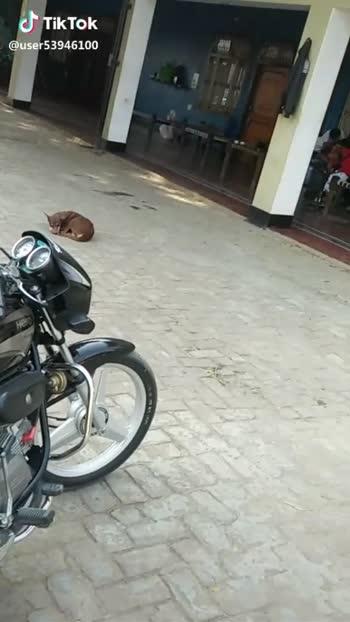 #instamotorcycle #motorcycle #cruisin #cruising #instagood #cc #photooftheday #bikestagram #helmet #cycle #biker #instamoto #rideout #instabike #bike #streetbike #instamotor #motorbike #ride #motorcycles #bikergang #instamotogallery #supermoto#