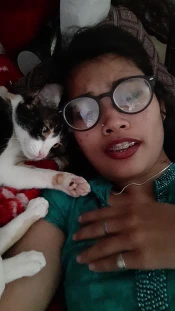 #missingtiktokbadly #cutecat #viralvideo