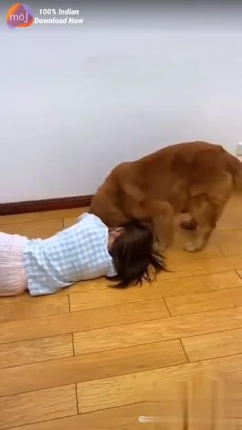 #good #puppylover
