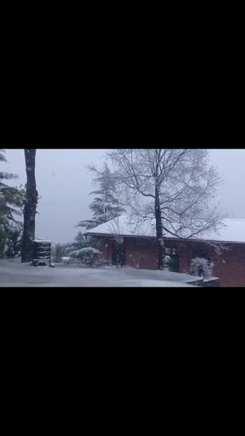 #snowfall