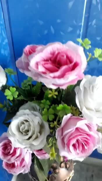 #flowers #flowerslovers #flowermagic #flowermagic #flowerstagram #floweroftheday #flowerstyles_gf #flowerporn #flimistaan #fil #filmistaanchannel