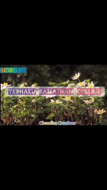 #naturelover #pachainiramey #love-status-roposo-beats