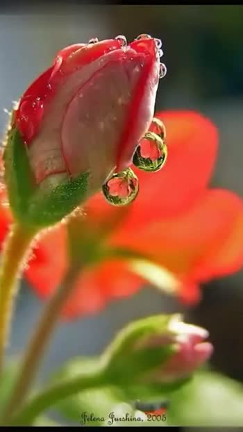 . . @prilaga #morning_ #morning_click #goodfriends #morning_glow #morning_clicks #goodday #prilaga #morning #morning_good #goodenergy #goodmovie #goodmood