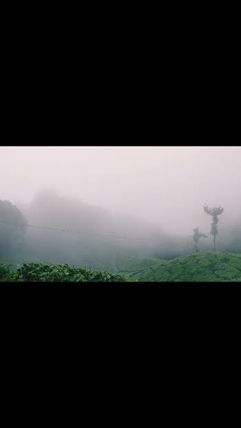 Badaalo ke bich 😍 Munnar ❤ #munnar #munnarhills #munnardiaries #clouds #cloudstimelapse #cloudscape #nature #naturevibes #naturevideo #naturephotography #naturelover #natureloverforlife