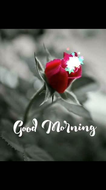 #good-morning  morning#good-morning