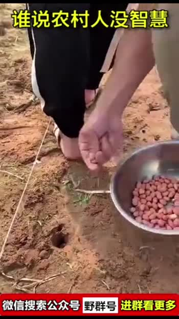 agri technologies
