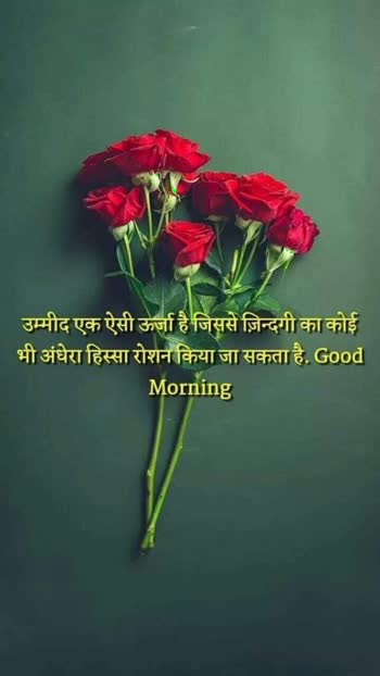 ##good-morning  morning##