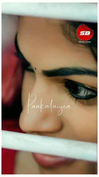 👀••• Macha Kanni unna Kaangaliyea••• 💓  ❤️  எல்லோரும் பிரியும்போது அவர்கள் தங்களின் நினைவாக தங்களுக்குள் நினைவு பரிசு கொடுப்பார்கள்.  ஆனால் ,                     நீ உன் நினைவுகளையே எனக்கு பரிசாக அளித்தாய் 😇 #❤️ when everyone loves you they will give you a souvenir of memory. But you gifted me with your memories 😇                                               Spear Balaji SB