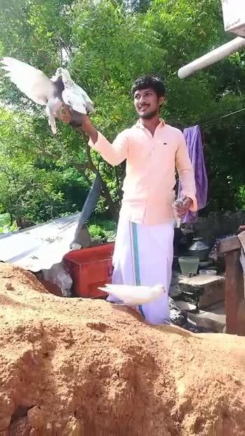 #lovers_feelings #tamilwhatsappstatus #tellywood #himachalpradesh #wpstatusvideo