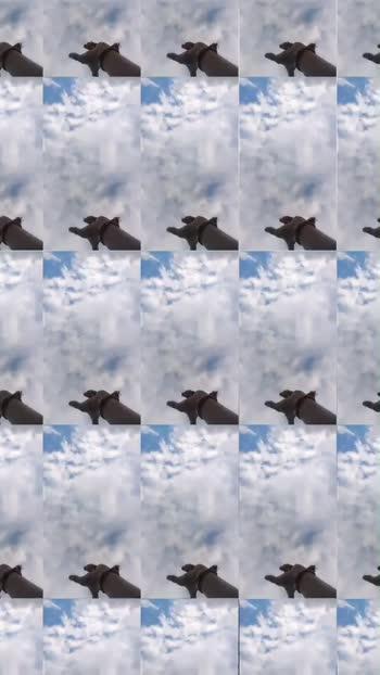 #roposostar #buterfly #cloudstimelapse #love-status-roposo-beats
