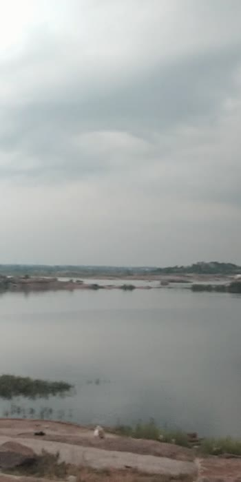 #hyderabadivideos  shameerpet lakes