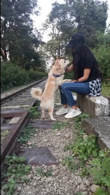 any dog lover here? #roposostar #roposo-beats #roposobeauty #roposolove #featurethisvideo #featureme #risingstar #doglover #roposofamily #love #fashionbloggers