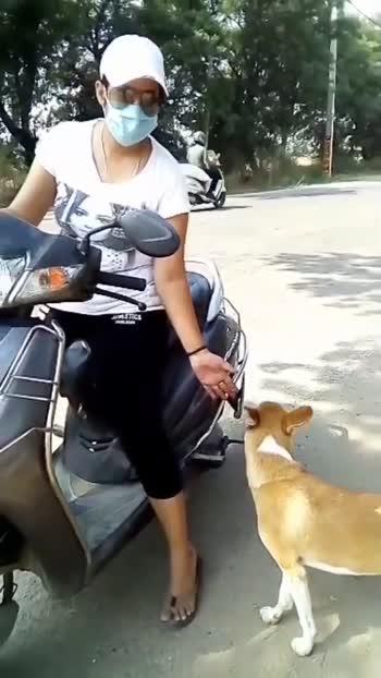 #Jaiveeru #Noonelovesyoumorethanyourpet#love-status-roposo-beats #Jane nhi deta khiii#haryanvisong #haryana