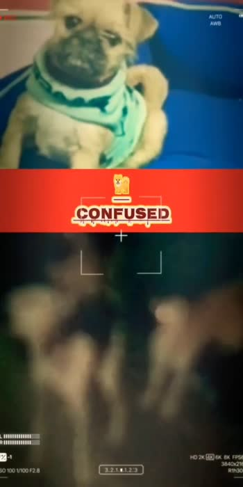 Nazar Ghayal Jeegar Chhalani, #bollywood #dailouge #bestfunnyvideos #followforfollowback #likeforcomment