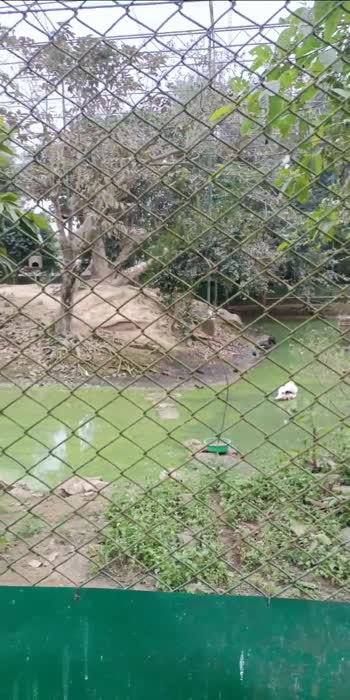 The Botanical Garden and Zoo Guwahati Assam