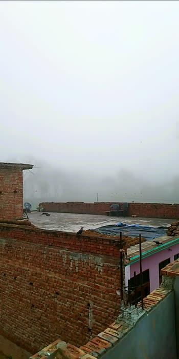 moasam#morningmotivation