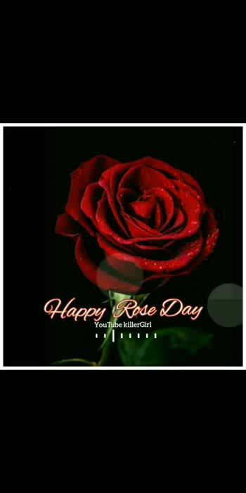 #roseday #roseday #rosedaisy #roseday #velentineday #velentine #couplegoals