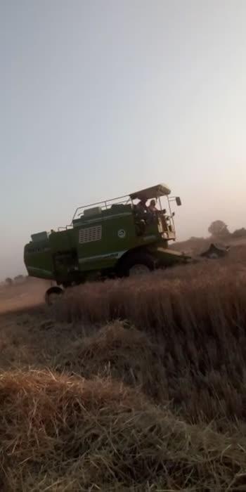 harvesting 2021