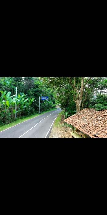 #roadside