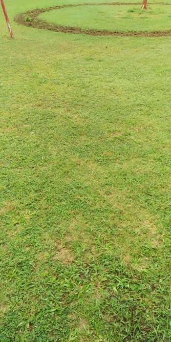 #greenery #fielding
