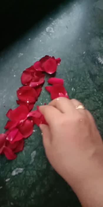 rose petals letter A