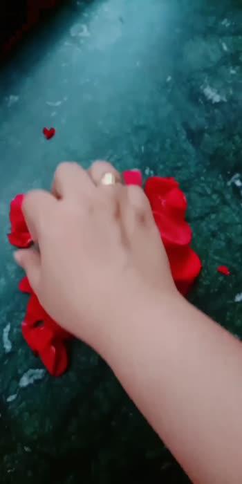 🌹 rose petals letter B🌹
