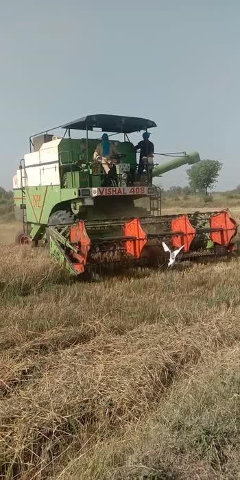 #Weat Harvesting