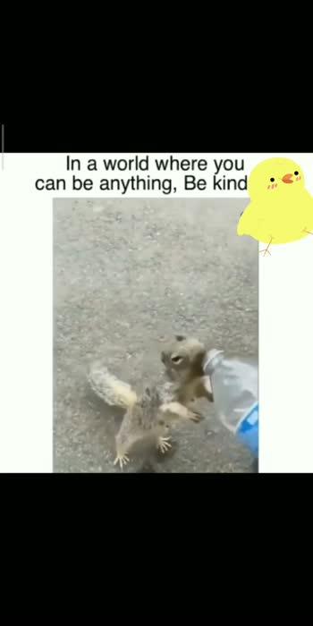 help animals #help #helping