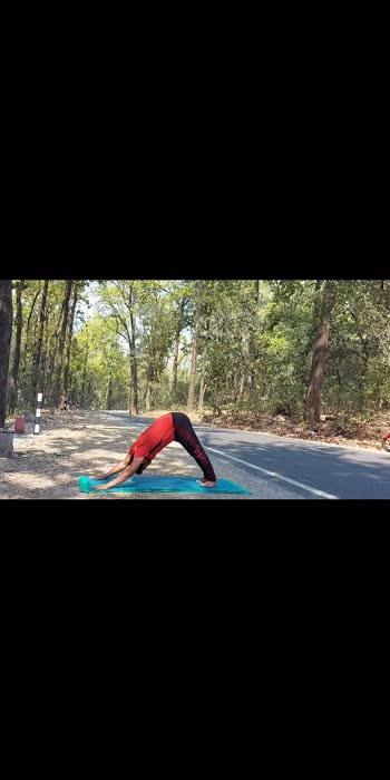 ॥अष्टाङ्ग नमस्कार॥ #yogachallenge #yogapose