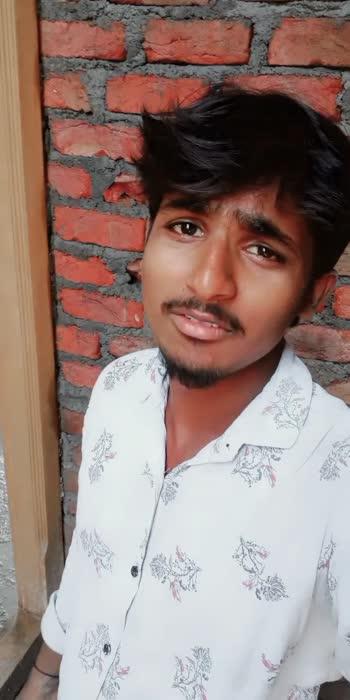 #single-status #single-status #