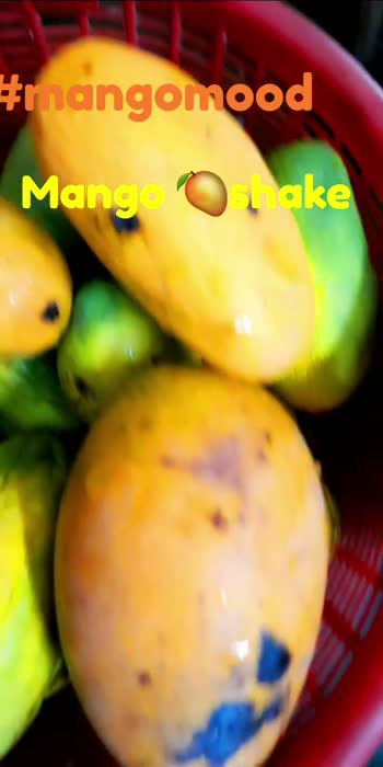#mangomood #mangomood