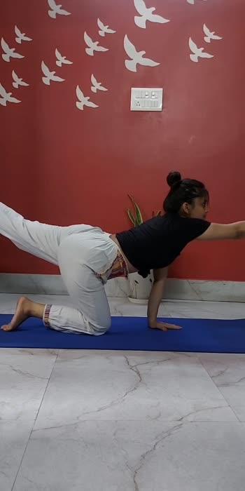 #yogaflow #yoga #yogapractice #yogainspiration #yogalife #yogalove #yogaeverydamnday #yogaeveryday #yogateacher #yogagirl #yogaeverywhere #yogachallenge #yogaposes #yogapose #yogajourney #yogi #yogadaily #yogalifestyle #namaste #yogacommunity #yogafun #yogagram #yogini #yogalover #yogafit #meditation #yogatime #yogaathome #fitness #roposo-beats