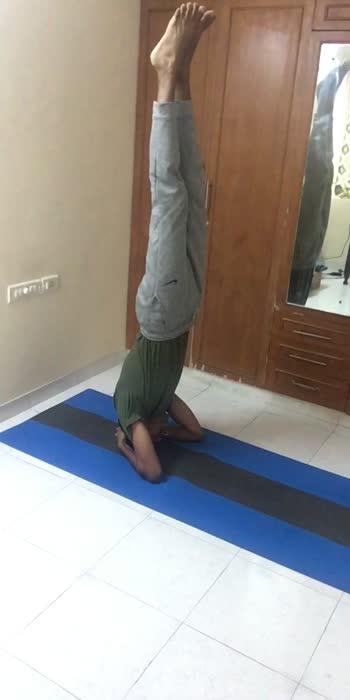 பலன்களை அள்ளி தரும் சிரசாசனம்.. இந்த ஆசனத்தை தொடர்ந்து செய்து வந்தால் மூச்சுத்திணறல் குறையும். நுரையீரல்களில் உள்ள சளி விரைவில் வெளியேறும் சுவாசக் கோளாறுக்கு பயனுள்ளது.  #yogachallenge #yogalove #yogainspiration #yogaday #fittamila #vip #wellnessjourney #lifestyletips #meditation #nomedicinie #nutrition #wellnesscoach