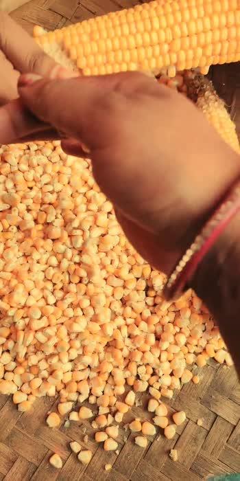 #Desifood #corn