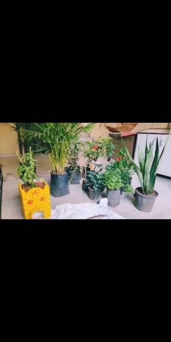 #greenchallenge #nature #naturelover #actressmahathi #instafeed #instagrammer