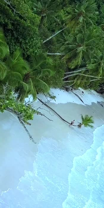 🏝🏝✈️ #seychelles  #love #happy #vibe  #sayitwitheyes #your2020 #missindia2020 #virtualvacation #vacation #indian #beautiful #beach #beachvibes #holidayseason #holidays #dji #djimavicpro #drone