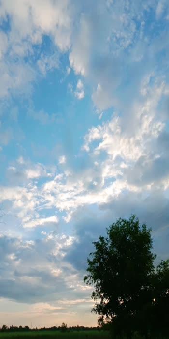 #sky #sky #tree #roposostar