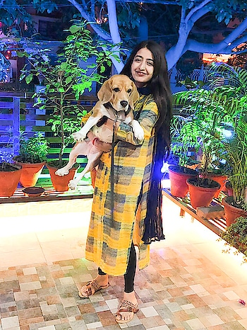 || Happy Diwali everyone ✨ Choosing Pooch over Pataka 🐶 . . #howilikeit #howilikeitjournal #indianwear #indianoutfit #ootd #geetikasehgal #fashion #fashionblogger #blogger #indianfashionblogger #diwali #diwalioutfit #diwaliootd #indianwear
