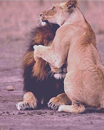 #bangaram  #newdp  #withmy  #hug #feelinghappy #relaxed