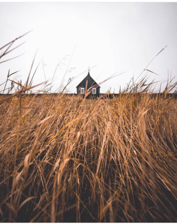 #house#grass#followmeonroposo#likeforlikeback #likeforlike#photographylovers