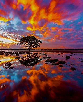 Beautiful Nature #beautiful #nature #naturelove #roposo #blogs