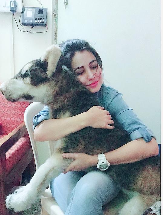 Every dog has his day..🐶😉😁 • • #unconditionallove #fordogs #alwaysandforever #softcorner #fondofdogs #bestfriend #bestpal #superamazing #bestanimal #lovelovelove #peacewhenihug #unbeatable #well #formoreupdates #staytunedwithme #😉👍🏻♥️