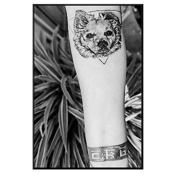 And the story begins.... @kdztattoos  Thank you for helping me put my lost soul back to life  #bruno #brunogambhir Ma misses you baby .... #tattoo  . #mother  #blackandwhite  #blacktattoo  #dogportrait  #furbabies  #furbabytattoo #dogtattoo  . #peta #animal #animalcruelty #2019  #2019goals  #animallovers  #behuman  #blogger  #dogs   #loveforanimals  #love #dogs #dogsofinstagram    #blogger  #fashionblogger  #dog #doglover #animals #animal #fun #positivevibes #positivity
