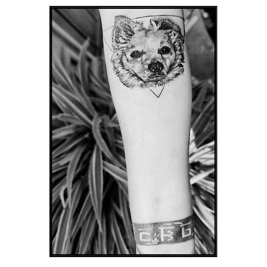 And the story begins.... @kdztattoos  Thank you for helping me put my lost soul back to life  #bruno #brunogambhir Ma misses you baby .... #tattoo  . #mother  #blackandwhite  #blacktattoo  #dogportrait  #furbabies  #furbabytattoo #dogtattoo  . #peta #animal #animalcruelty #2019  #2019goals  #animallovers  #behuman  #blogger  #dogs   #loveforanimals  #love #dogs #dogsofinstagram    #blogger  #fashionblogger  #dog #doglover #animals #animal #fun #positivevibes #positivity