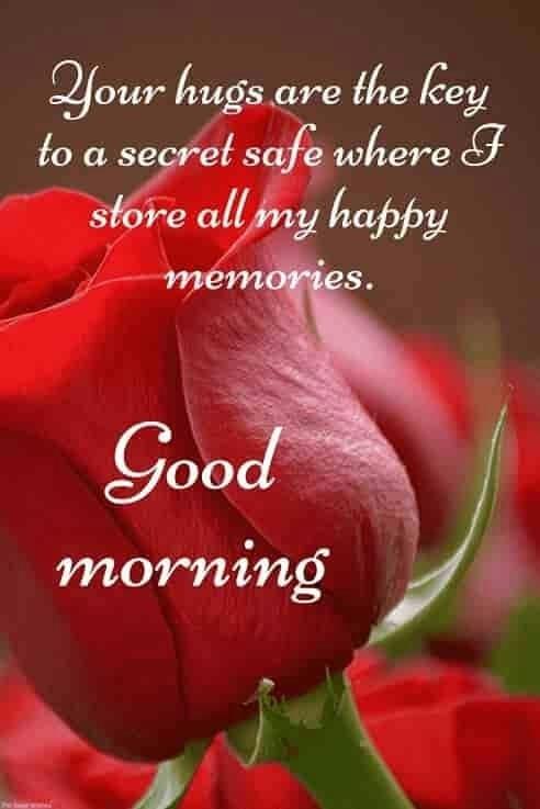 Good morning #good----morning  #goodmorning  #goodmorningpost  #goodmorning-roposo  #good_morning_friends________ #goodmorning-roposo  #goodmorningfriends  #goodmorningloves  #lovegoodmorning  @roposocontests  @priyaaaaaa  @roposokin04  @sailaja0784   @bokulmondal   @milanpatel59164bfb  @susmita0104   @chempithongs  @dax0143