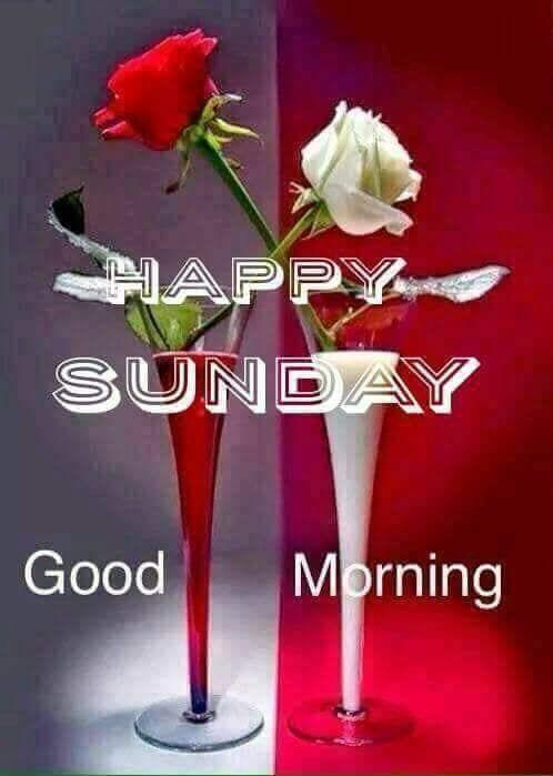 Happy Sunday! #goodmorning-roposo #sunday #dailywisheschannel #haveaniceday #roposomornings