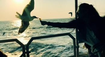 Happiness is birds 🐦 around .... . . . #birdlovers #freelife #carefree #birdphotography #livingwithbirds